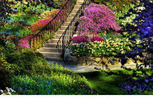 dream-spring-2012-beautiful-garden_2560x1600_96626